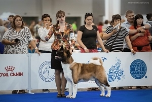 World Dog Show 2016 results