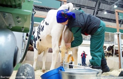 Modern approach to diagnosis and prevention of subclinical mastitis
